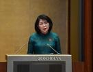 Phó Chủ tịch nước thay Chủ tịch nước trình công ước bảo vệ người lao động