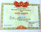 Vụ tặng giấy khen cho trẻ mầm non: Sở GD&ĐT Thanh Hóa chấn chỉnh khẩn cấp