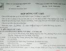 Chưa được cấp phép, dự án BNC Dragon đã rao bán rầm rộ