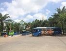 """Hơn 1.100 xe buýt ở TPHCM """"ế"""" quảng cáo"""