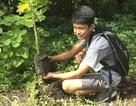 Học sinh, sinh viên Philippines phải trồng 10 cây xanh mới được tốt nghiệp!
