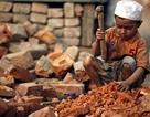 Thế giới có nguy cơ không hoàn thành mục tiêu về chấm dứt lao động trẻ