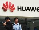 Huawei yêu cầu nhân viên Mỹ về nước sau lệnh cấm của Washington