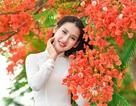 Cô gái xinh đẹp thả hồn trên con đường hoa phượng đỏ Hải Phòng