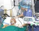 Nam thanh niên 27 tuổi chết não hiến tạng cứu 4 người