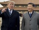 Châu Á loay hoay mắc kẹt khi Mỹ - Trung căng thẳng đối đầu