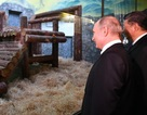 """Món quà """"quý hiếm"""" ông Tập Cận Bình tặng Tổng thống Putin"""