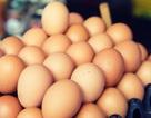 Ăn trứng thường xuyên có tốt cho sức khỏe?
