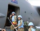 Khẳng định cam kết của Việt Nam đóng góp cho hòa bình thế giới