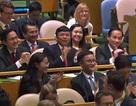 Việt Nam đắc cử Ủy viên không thường trực Hội đồng Bảo an với số phiếu kỷ lục 192/193