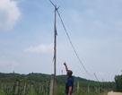 """Hiểm họa từ những cột điện """"có một không hai"""" tại Hà Tĩnh"""