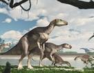 Phát hiện hoá thạch của một đàn khủng long cực hiếm