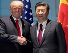 Ông Tập Cận Bình gọi ông Donald Trump là bạn giữa tâm bão thương chiến căng thẳng
