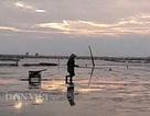 Độc lạ: Không cần mồi, loài cá kỳ lạ này vẫn phi vào giỏ ầm ầm