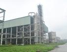 """Dính đến """"siêu dự án"""" 2.500 tỷ đồng Ethanol Phú Thọ,""""sếp"""" dầu khí bị bắt"""