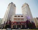 Tổng công ty Sông Đà: Lợi nhuận thấp kỷ lục, nợ phải trả gấp 3 vốn sở hữu