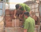 Truy tìm tài xế lái xe chở gỗ lậu tông vào công an rồi bỏ trốn