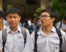 Điểm chuẩn nhiều lớp vào Trường Phổ thông Năng khiếu giảm mạnh