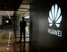 Huawei yêu cầu nhà mạng Verizon của Mỹ trả hơn 1 tỷ USD cho hơn 230 bằng sáng chế
