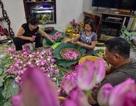 Đệ nhất trà Hà Nội: Làm từ 1000 bông sen, bán giá đắt như vàng