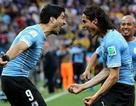 Uruguay - Ecuador: Chờ Cavani, Suarez thị uy sức mạnh