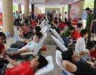 """Đà Nẵng: 1.000 đơn vị máu được hiến tại ngày hội """"Hành trình đỏ"""""""