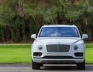 Tất cả xe của Bentley sẽ có phiên bản chạy điện