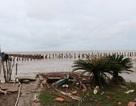 Sạt lở rất nghiêm trọng trên tuyến đê biển Kiên Giang
