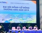 ĐHCĐ Faros: Chủ tịch Trịnh Văn Quyết cam kết không bán cổ phiếu trong năm nay