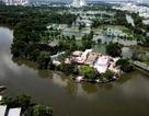 Sài Gòn: Độc đáo ngôi đình hơn 150 năm tuổi nằm giữa dòng kênh Đôi