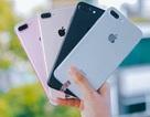 """Những điều nhất định phải lưu tâm khi mua iPhone """"qua tay"""""""