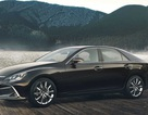 Xe Toyota, Lexus sẽ dùng chung cơ sở gầm bệ với Mazda?