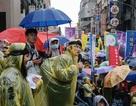 Báo nước ngoài viết gì về việc hàng ngàn công nhân Việt Nam làm việc bất hợp pháp tại Đài Loan?