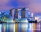 Ngày hội Tư vấn: Tìm hiểu James Cook – Cơ hội học tập và nhận bằng chuẩn Úc tại Singapore
