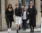 Angelina Jolie dành trọn thời gian cho các con