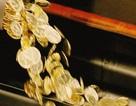Bitcoin lần thứ hai vượt qua mốc 11.000 USD: Chưa có dấu hiệu dừng lại