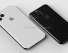 Thiết kế mới của iPhone XI lộ diện hoàn toàn qua ảnh phụ kiện vỏ bảo vệ