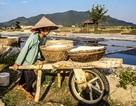 Hà Tĩnh: Thất bại thảm hại trong nỗ lực khôi phục lại vựa muối lớn nhất tỉnh