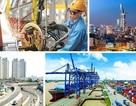 EVFTA được ký kết: Khẳng định vị thế của Việt Nam