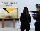 LG sẽ ra mắt TV OLED 48 inch để mở rộng thị phần