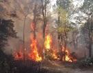 Một phụ nữ gặp nạn, tử vong khi tham gia chữa cháy rừng