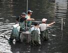 Hà Nội: Máy làm sạch sông Tô Lịch được đưa lên bờ bảo dưỡng