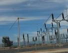 """Nhiều dự án bị ép cắt giảm công suất, Hiệp hội điện gió Bình Thuận """"kêu cứu"""""""