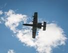 Máy bay chiến đấu Mỹ làm rơi 3 quả bom sau khi đâm phải chim
