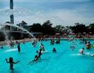 Cảnh báo ký sinh trùng nguy hiểm trong bể bơi