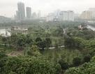 Hà Nội tạm dừng nghiên cứu bãi xe ngầm trong công viên Cầu Giấy