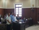 Vụ buôn lậu gỗ trị giá 63 tỷ đồng: Bị cáo kêu oan, VKS kháng nghị tăng hình phạt