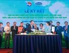Vinamilk tài trợ chính cho các Đội tuyển Bóng đá Quốc gia  vì một Việt Nam vươn cao