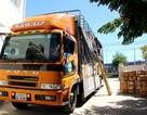 Tạm giữ xe biển số Lào chở nhiều hàng hóa không rõ nguồn gốc