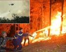 Nghiên cứu ứng dụng công nghệ 4.0 vào phòng, chữa cháy rừng